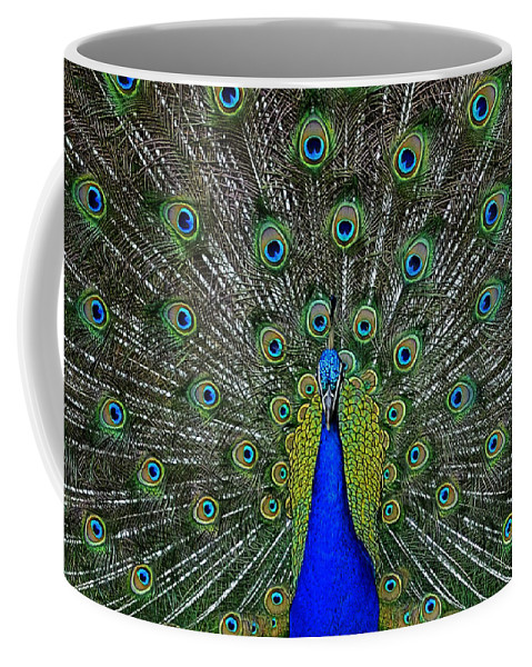 Peacock Coffee Mug featuring the photograph Eyes Have It by Eric Albright