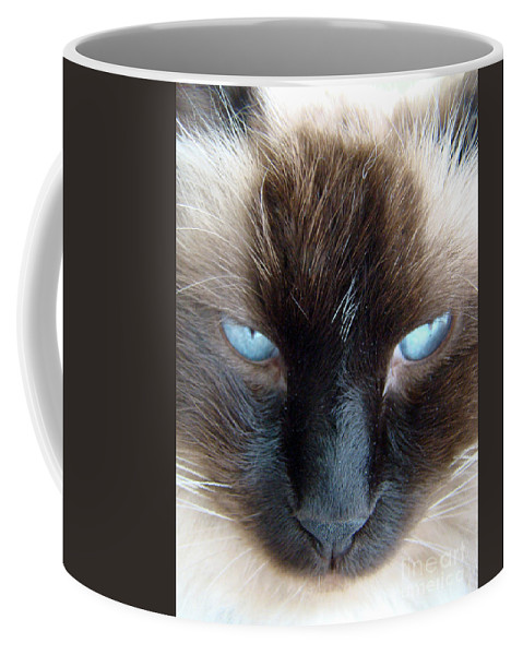 Cat Coffee Mug featuring the photograph Face by Nancy L Marshall