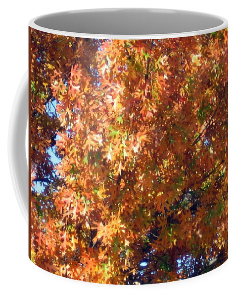 Tree Coffee Mug featuring the photograph Fall by Amy Hosp