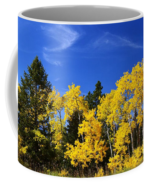 Yellow Coffee Mug featuring the photograph Fall Aspens by Deanna Cagle