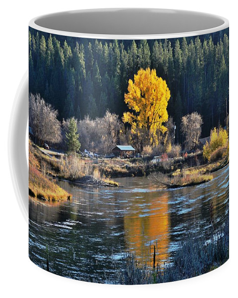 Autumn Coffee Mug featuring the photograph Fall Brilliance On Warm River by Link Jackson