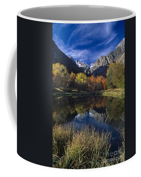 North America Coffee Mug featuring the photograph Fall Color And Reflection Below Middle Palisades Glacier California by Dave Welling
