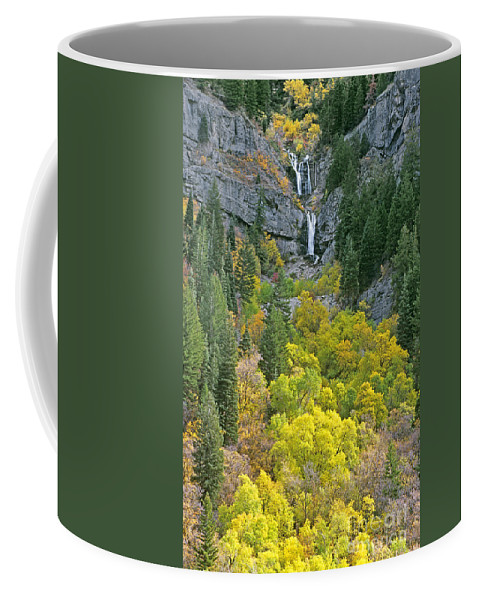 North America Coffee Mug featuring the photograph Fall Color And Waterfalls In Provo Canyon Utah by Dave Welling