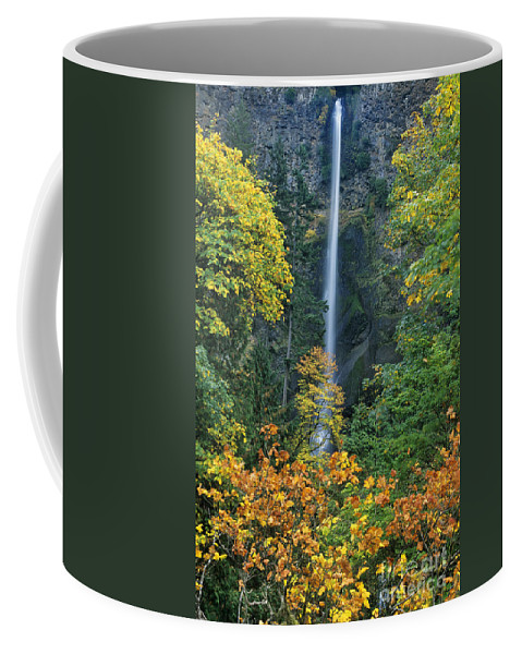 North America Coffee Mug featuring the photograph Fall Colors Frame Multnomah Falls Columbia River Gorge Oregon by Dave Welling
