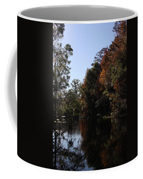 Swamp Coffee Mug featuring the photograph Fall Colors In The Swamp by Christiane Schulze Art And Photography