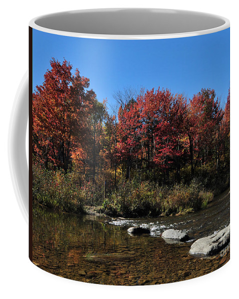 Fall Foliage Coffee Mug featuring the photograph Fall Landscape Maine 33 Baxter State Park South Branch Pond Entrance To Stream by Terri Winkler