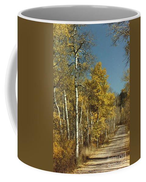 Aspens Coffee Mug featuring the photograph Fall Lane by Brandi Maher
