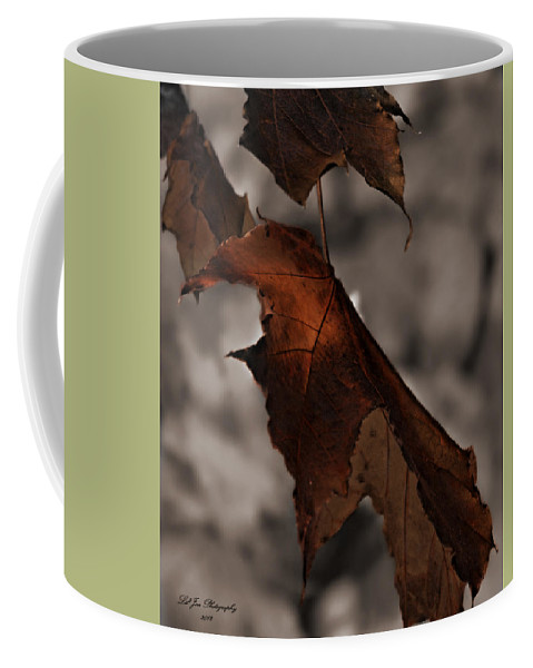 Autumn Coffee Mug featuring the photograph Fall Leaf Tweaked by Jeanette C Landstrom