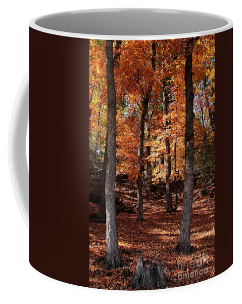 Landscape Coffee Mug featuring the photograph Fall On A Stump by Robert Frederick