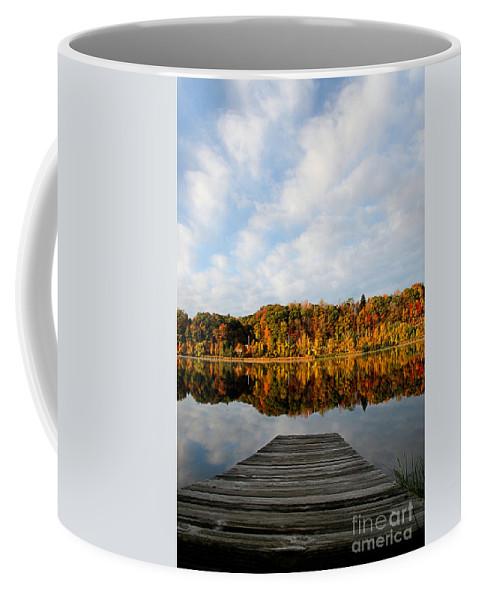 Lake Coffee Mug featuring the photograph Fall On The Lake by DJ Florek