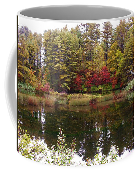 Fall Coffee Mug featuring the photograph Fall Reflection And Colors by Sherman Perry