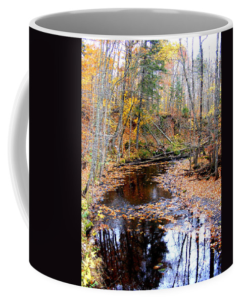 Water Coffee Mug featuring the photograph Fall River by Mark Hudon