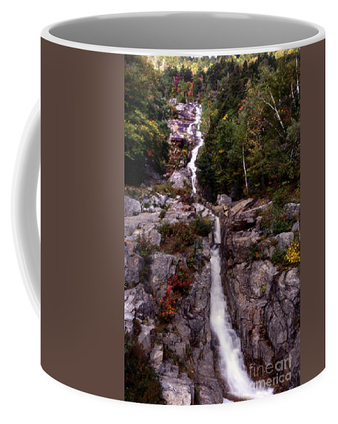 Scenic Tours Coffee Mug featuring the photograph Fall Rush by Skip Willits
