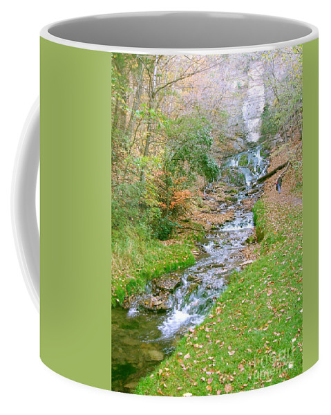 Springs Coffee Mug featuring the photograph Fall Springs by Minding My Visions by Adri and Ray