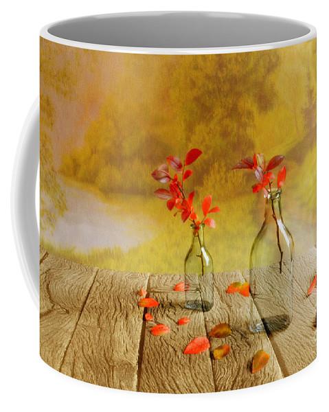 Art Coffee Mug featuring the photograph Fallen Leaves by Veikko Suikkanen