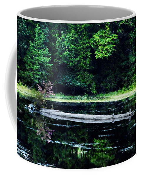 Fallen Coffee Mug featuring the photograph Fallen Log In A Lake by Bill Cannon