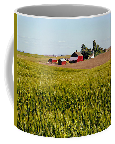 Agricultural Lands Coffee Mug featuring the photograph Farmlands Near Davenport by Ed Cooper Photography