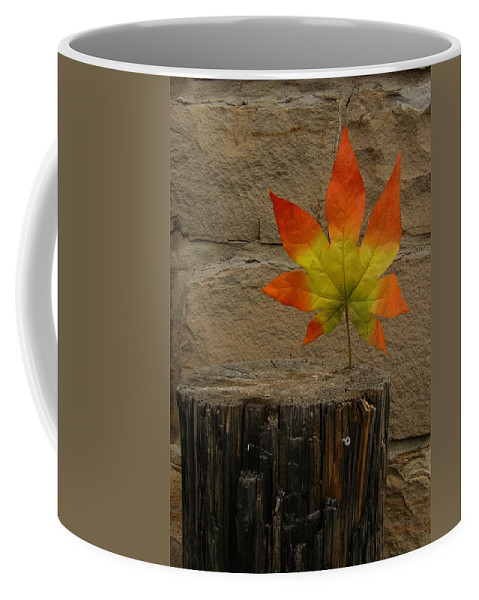 Color Photography Coffee Mug featuring the photograph Faux Leaf by Kirk Griffith