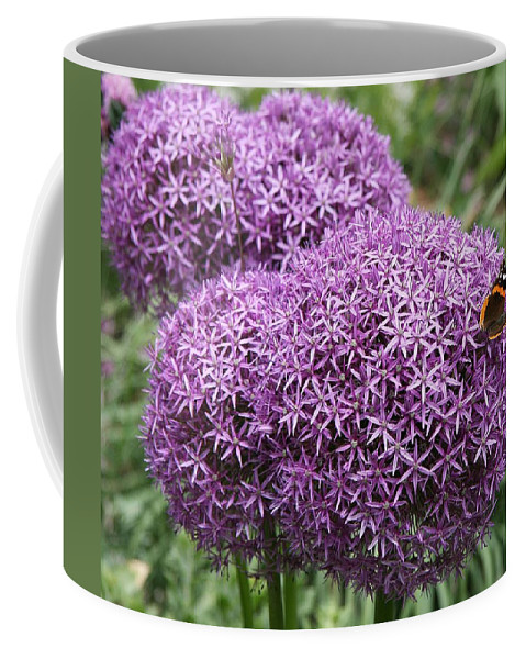Allium Coffee Mug featuring the photograph Favorite Butterfly Spot by Christiane Schulze Art And Photography