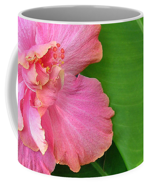 Hawaii Iphone Cases Coffee Mug featuring the photograph Favorite Flower 2 by James Temple