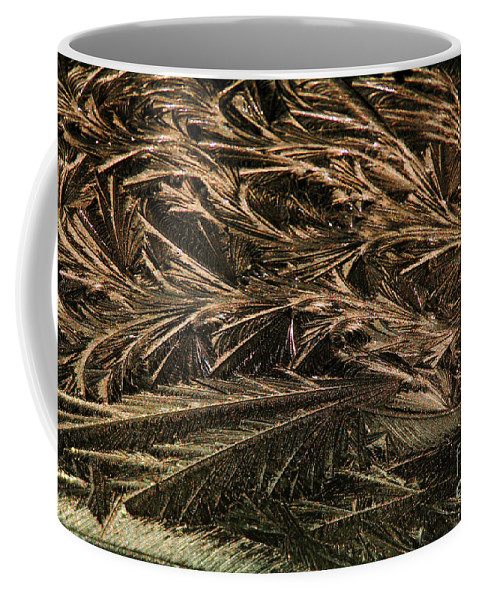 Ice Coffee Mug featuring the photograph Feather Ice 2 by Judy Wolinsky