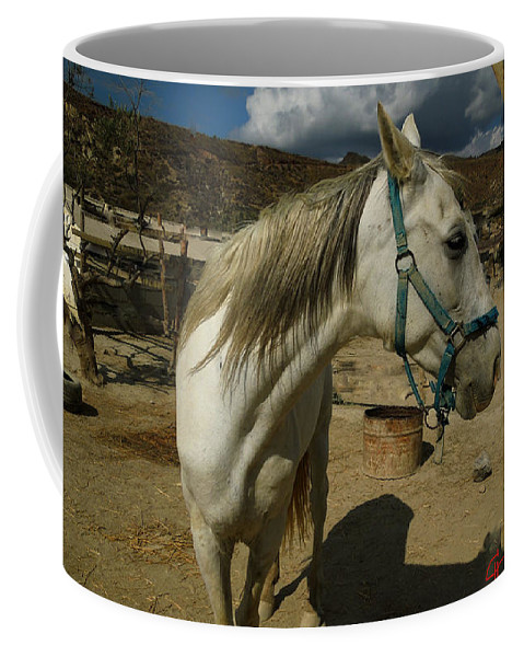 Colette Coffee Mug featuring the photograph Featured Cute Friend In The Mountain Spain by Colette V Hera Guggenheim