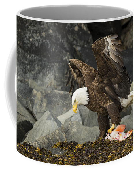 Eagle Coffee Mug featuring the photograph The Ultimate Bald Eagle by Ted Raynor