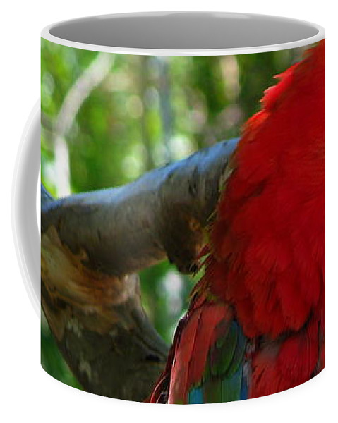 Patzer Coffee Mug featuring the photograph Feeling A Little Red by Greg Patzer