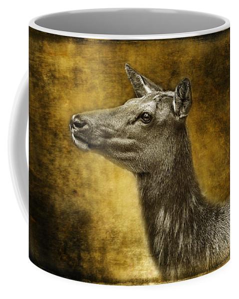 Female Yellowstone Elk Coffee Mug featuring the photograph Female Yellowstone Elk by Wes and Dotty Weber