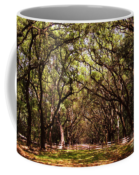 Fence Coffee Mug featuring the photograph Fence by Andrea Anderegg