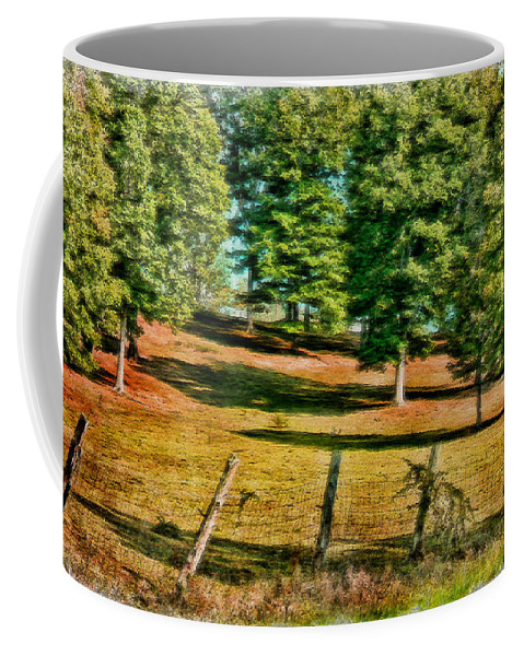 Fence Coffee Mug featuring the photograph Fence - Featured In Comfortable Art Group by Ericamaxine Price