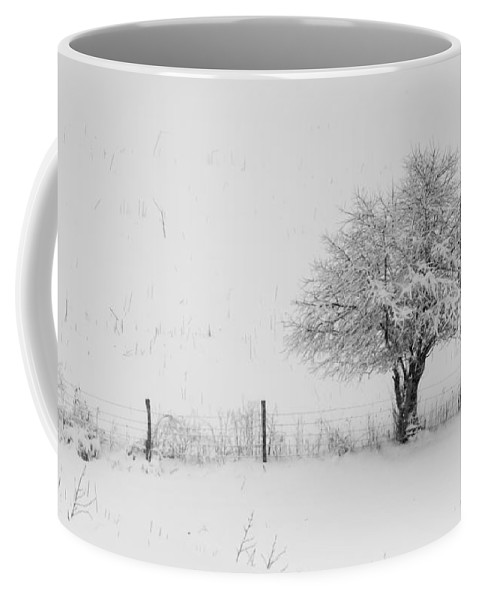 Fence Coffee Mug featuring the photograph Fence Line In The Wintertime by Jan M Holden
