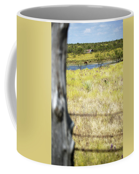 Fence Coffee Mug featuring the photograph Fence Pasture Horse 14419 by Jerry Sodorff