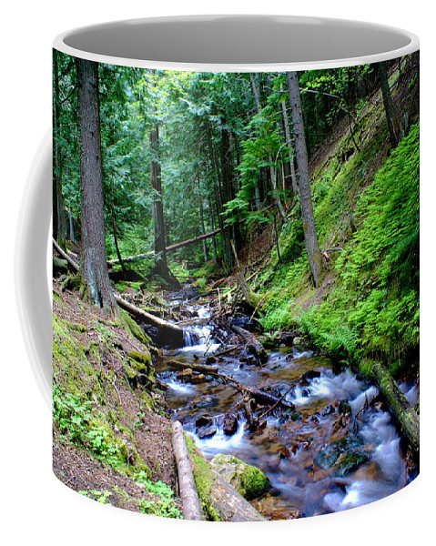 Ferns Coffee Mug featuring the photograph Ferns Dancing By The Creek by Ben Upham III