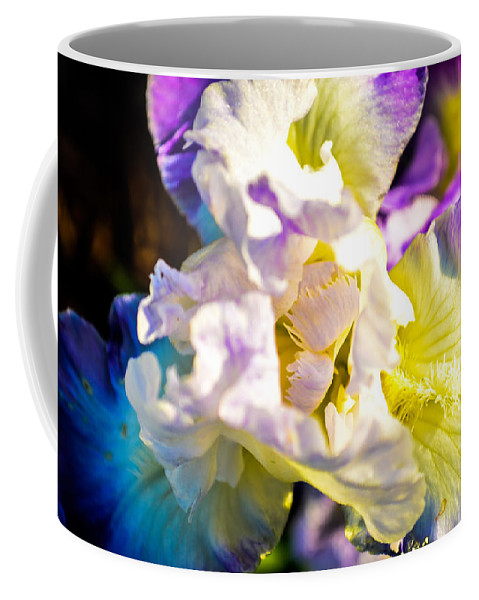 Flowers Coffee Mug featuring the photograph Fickle Iris by Mary Hahn Ward