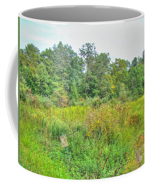 Field Coffee Mug featuring the photograph Field Of Dreams by Mother Nature