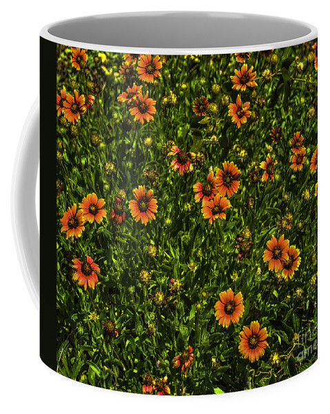 Field Of Flowers Coffee Mug featuring the photograph Field Of Flowers by Dale Powell