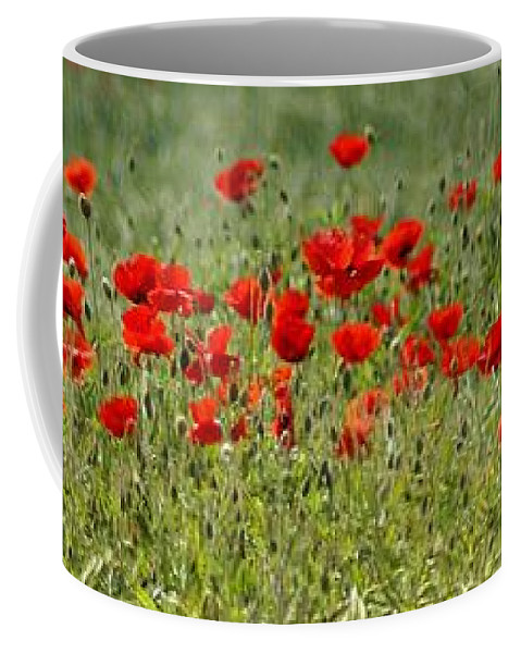 Poppies Coffee Mug featuring the photograph Field Of Poppies by Carol Lynch