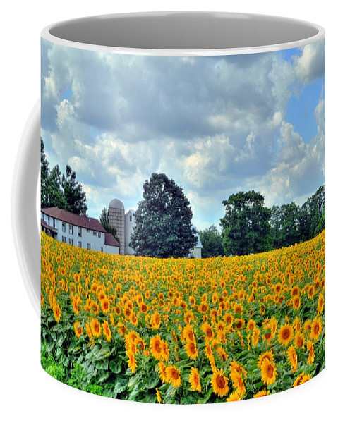 Sunflower Coffee Mug featuring the photograph Field Of Sunflowers by Kathleen Struckle