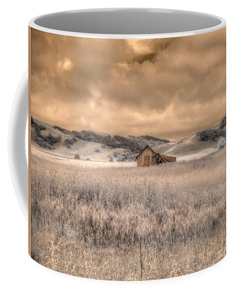 Barn Coffee Mug featuring the photograph Fields Of Gold by Jane Linders