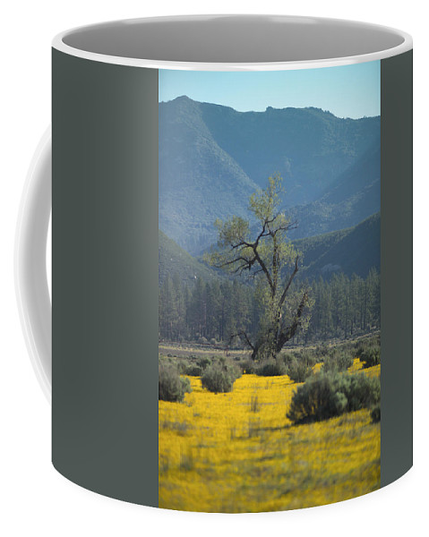 Yellow Flowers Coffee Mug featuring the photograph Fields Of Yellow Foxglove by Scott Campbell