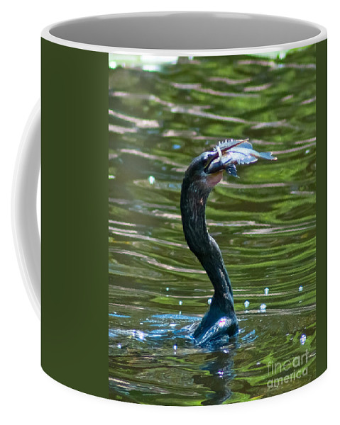 Cormorant Coffee Mug featuring the photograph Fine Dining by Stephen Whalen