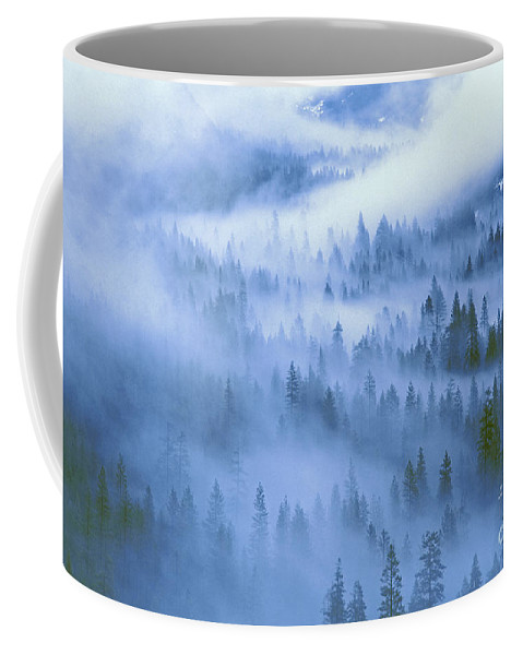 North America Coffee Mug featuring the photograph Fir Trees Shrouded In Fog In Yosemite Valley by Dave Welling