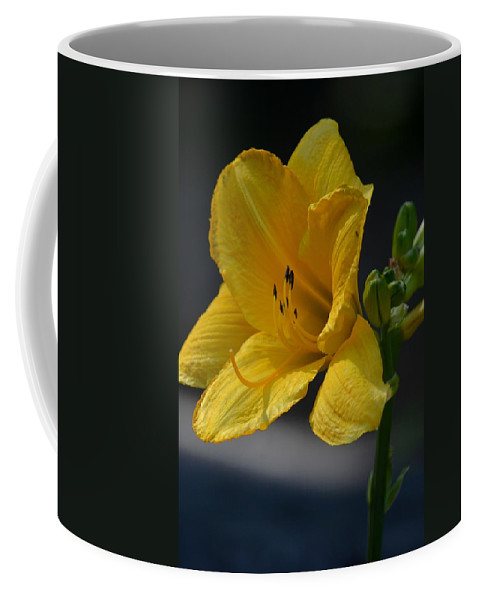 Firest Bloom - Lily Coffee Mug featuring the photograph First Bloom - Lily by Maria Urso