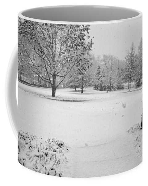 Snowcold Coffee Mug featuring the photograph First Snow by Jean Macaluso