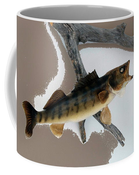Animals Coffee Mug featuring the photograph Fish Mount Set 02 C by Thomas Woolworth