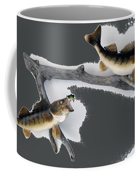 Animals Coffee Mug featuring the photograph Fish Mount Set 06 B by Thomas Woolworth