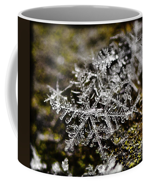 Snow Coffee Mug featuring the photograph Snowflakes On Rust by Shirley Tinkham
