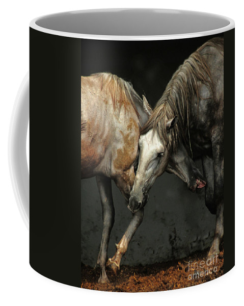 Flamenco Coffee Mug featuring the photograph Flamenco by Angel Ciesniarska