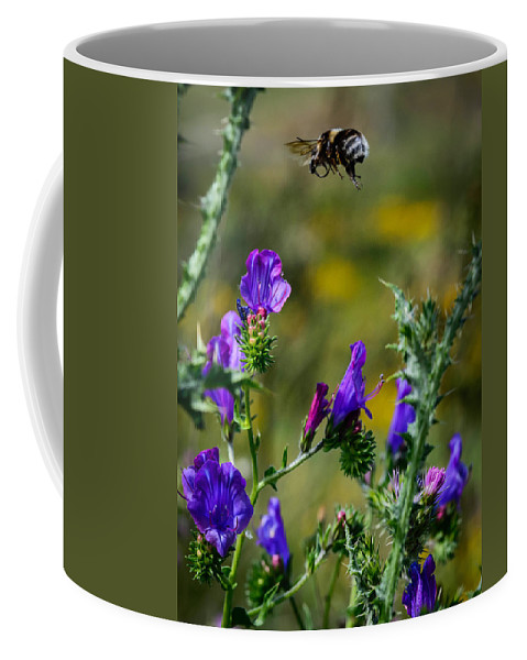 Bumblebee In Flight Coffee Mug featuring the photograph Flight Of The Bumblebee by Marco Oliveira